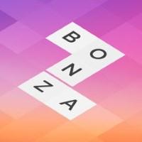 Bonza Jigsaw cover art